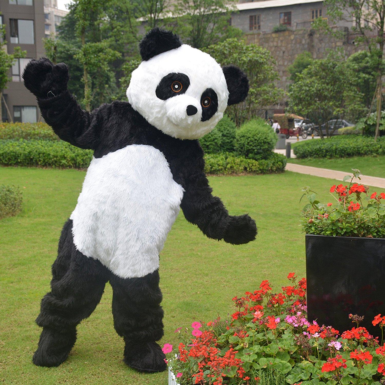 Panda amazon 178 22